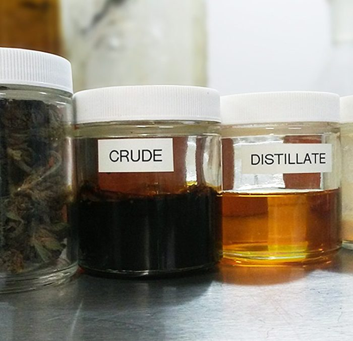 Full Spectrum CBD vs. CBD Isolate: What's the difference?