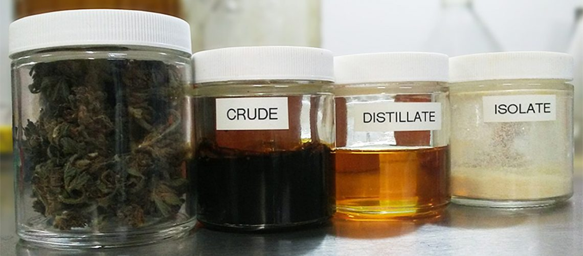 (From left to right) Hemp flower, crude extract, distilled crude, CBD isolate